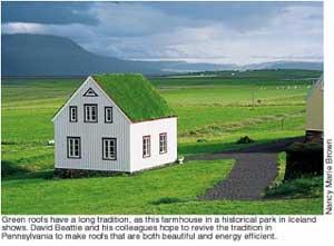 Green roof study